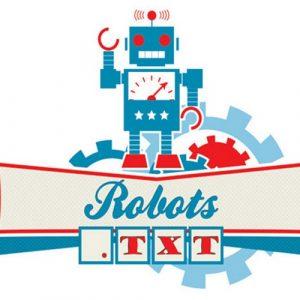 Правильная настройка robots.txt на сайте